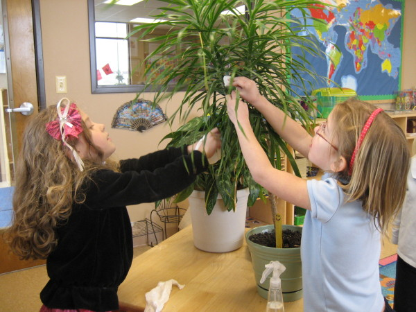 Students enjoy taking care of their living plants